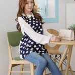 EBH191115 Korean Pregnant  Primer Blouse